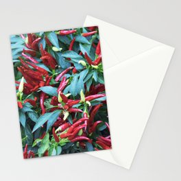 Longwood Gardens Autumn Series 204 Stationery Cards