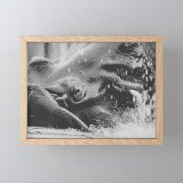 Hippopotamus amphibius Framed Mini Art Print