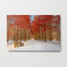 Ruby Winter Trail Metal Print