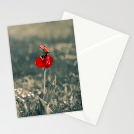 Lonely Red Flower Stationery Cards