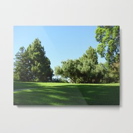 Bella Vista Open Space 2515 Metal Print