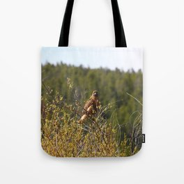 Red-tailed Hawk in the Tetons Tote Bag