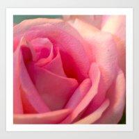 Rose Exposed Art Print