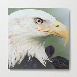 THE EAGLE EYE Metal Print