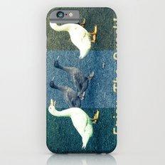 Enjoy the Quack Slim Case iPhone 6s