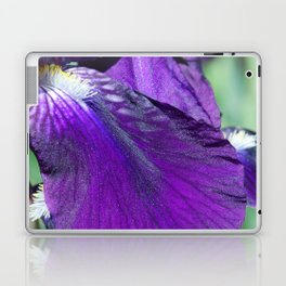 purple iris Laptop & iPad Skin