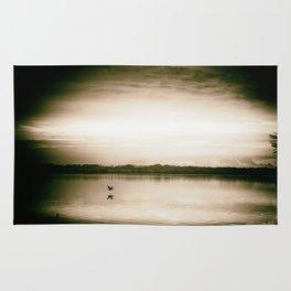 Sunset in camera obscur (2) Rug