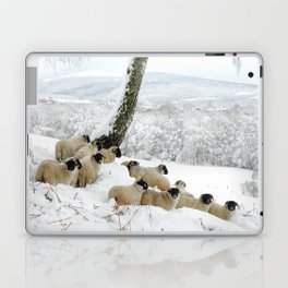 Sheltering Flock Laptop & iPad Skin