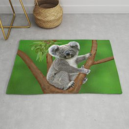 Blue-eyed Baby Koala Bear Rug