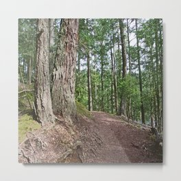 WOODED PATHWAY BY THE LAKE Metal Print