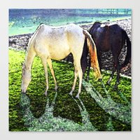 horses Canvas Prints featuring horses by  Agostino Lo Coco