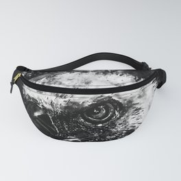face of a vulture wsbw Fanny Pack