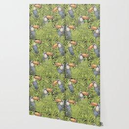 Toucan II Wallpaper