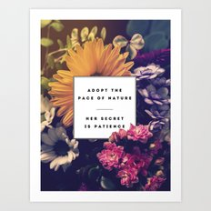 The Pace Of Nature Art Print