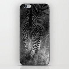 Zebra iPhone & iPod Skin