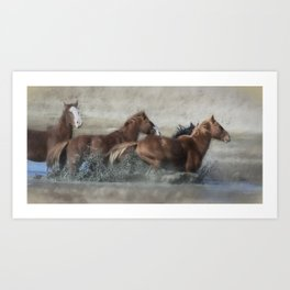 Mustangs Getting Out of a Muddy Waterhole the Fast Way painterly Art Print