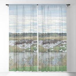 1001 Snow Geese Sheer Curtain