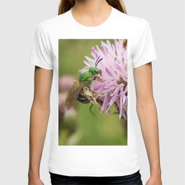 Green Bee on a Thistle T-shirt