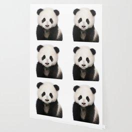 Panda Cub Wallpaper