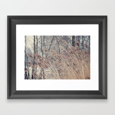 Swaying Grasses Framed Art Print