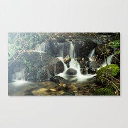 Streams Canvas Print