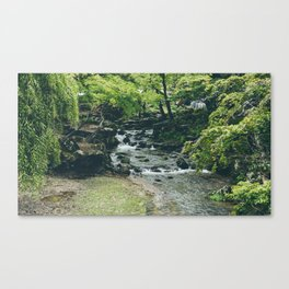 Homecoming Canvas Print