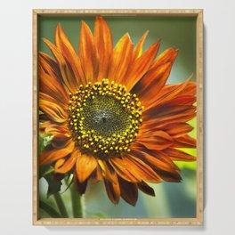 Orange Sunflower Serving Tray