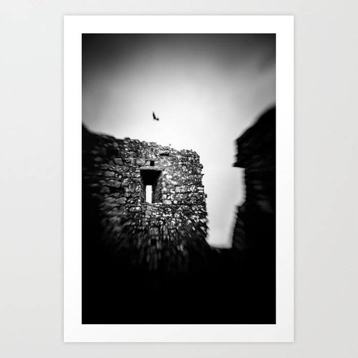 Crow at the Abbey Art Print