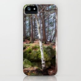 Dreamforest1 iPhone Case