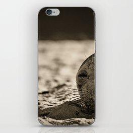Elephant seal face close up in sepia tone iPhone Skin