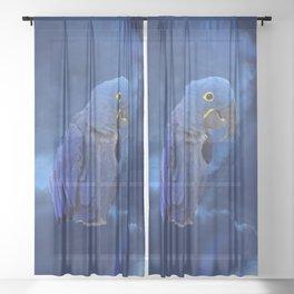 Hyacinth Macaw Sheer Curtain