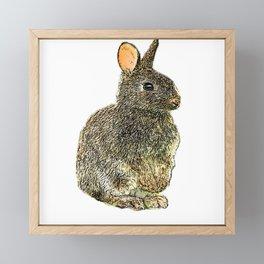 rabbit desain 001 Framed Mini Art Print