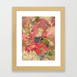 Rioja Grapes Framed Art Print