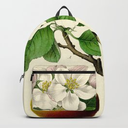 Antique Apple Study Backpack