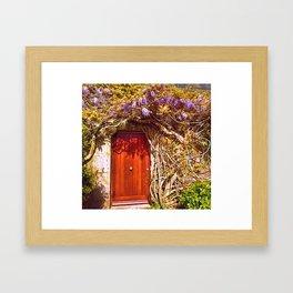 Irish Door Framed Art Print