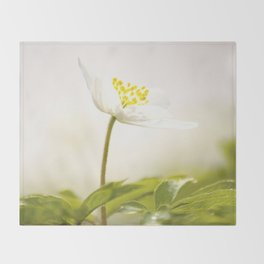 Wood Anemone Blooming in Forest Throw Blanket