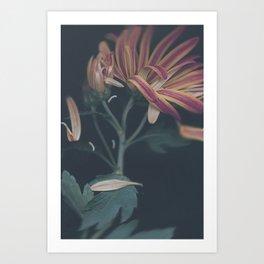 Ripen Art Print