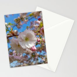 Cherry Blossoms at Kew Gardens Stationery Cards