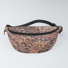 Red Planet Fanny Pack