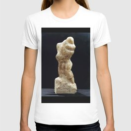 A Man & Wife by Shimon Drory T-shirt
