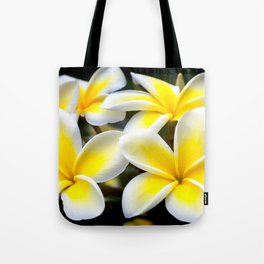 Plumeria Floral Art, Plumeria Iphone Case, Floral Tote Bag, Floral Throw Pillow, Tote Bag