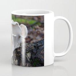 Birch Polypore Coffee Mug