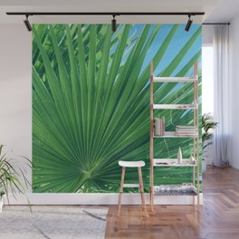 Fan Palm Leaf Against Azur Blue Sky Wall Mural