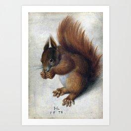 Hans Hoffmann Red Squirrel Art Print