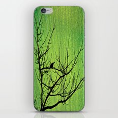 Beauties & mysteries iPhone & iPod Skin