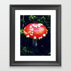 Fairytale Toadstool Framed Art Print