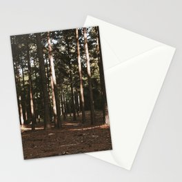 Forest Daylight Stationery Cards