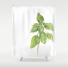 The Basil Plant Shower Curtain