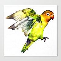 parrot Canvas Prints featuring Parrot by cmphotography