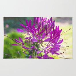 Floral Print 036 Rug